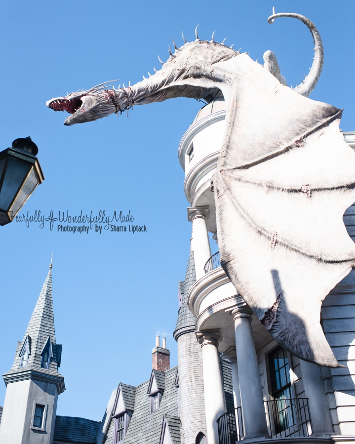 Harry Potter-4523