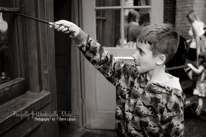 Harry Potter-4628